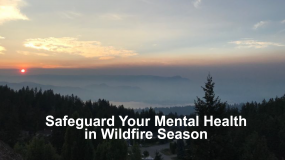 Safeguard Your Mental Health in Wildfire Season