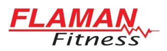 flaman fitness (logo)